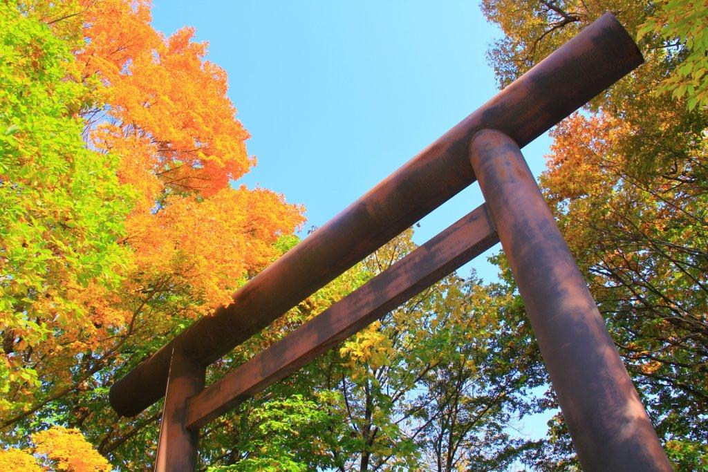 maruyama-history-紅葉と鳥居