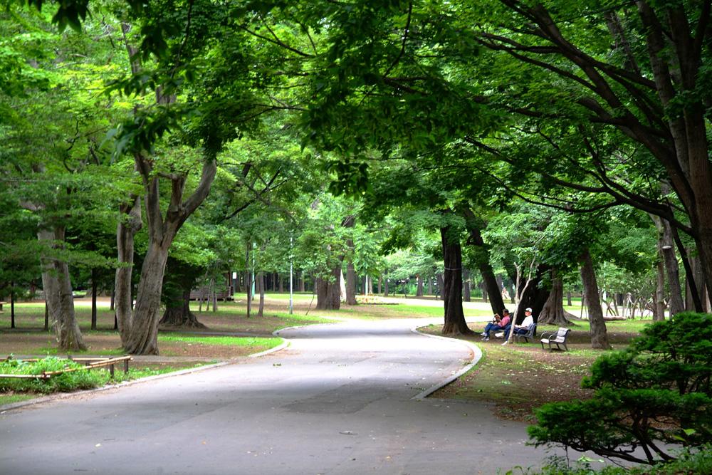 新緑の円山公園