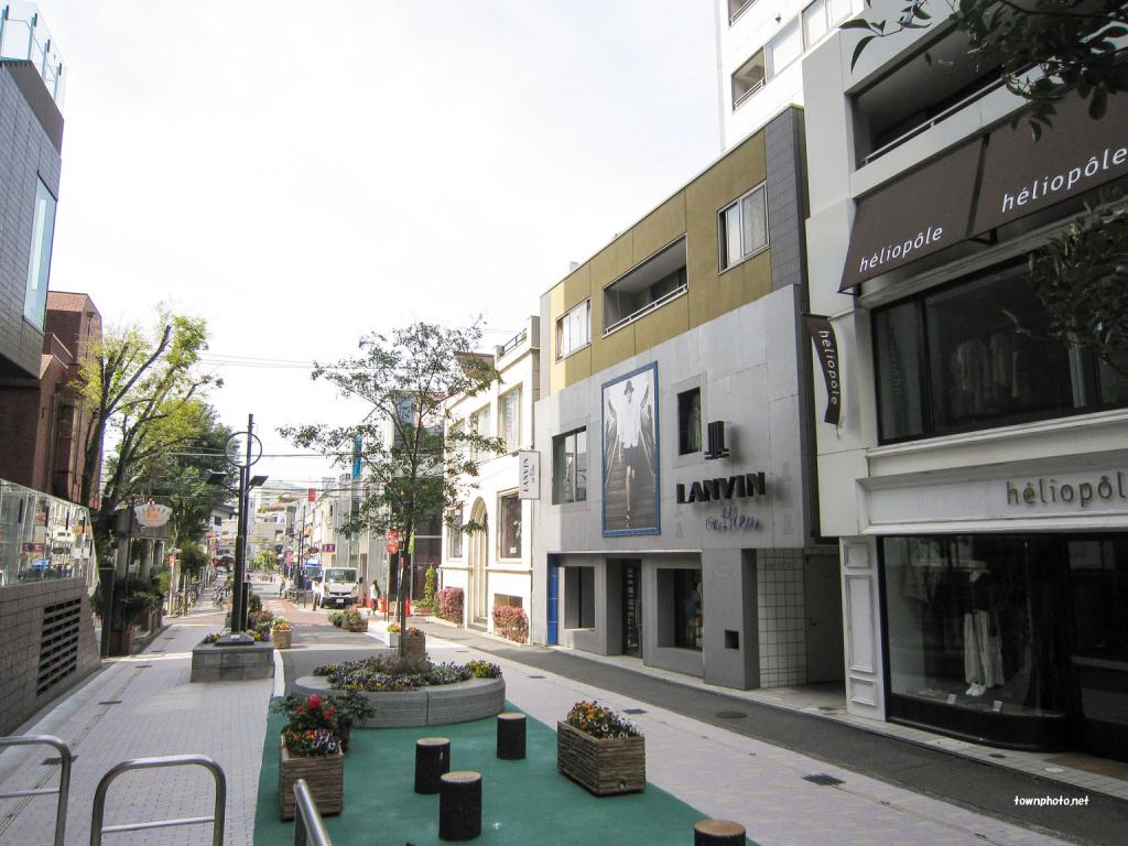 キャットストリートの写真